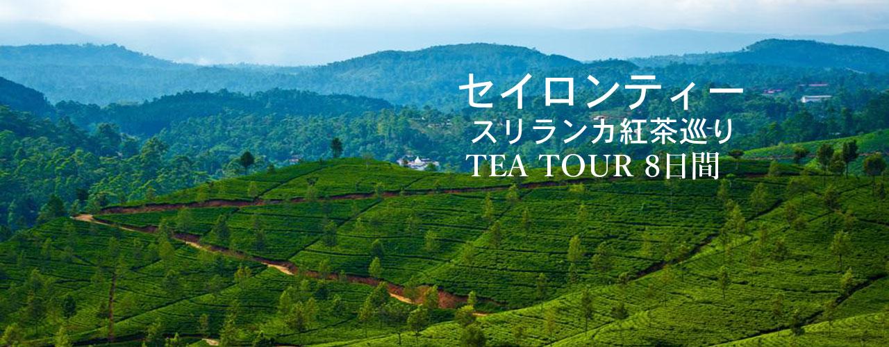 Tea-Tour-2017